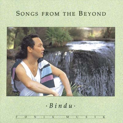 N/A – Songs from the beyond - fønix musik fra bog & mystik