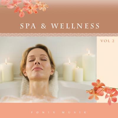N/A – Spa & wellness 2 - fønix musik fra bog & mystik