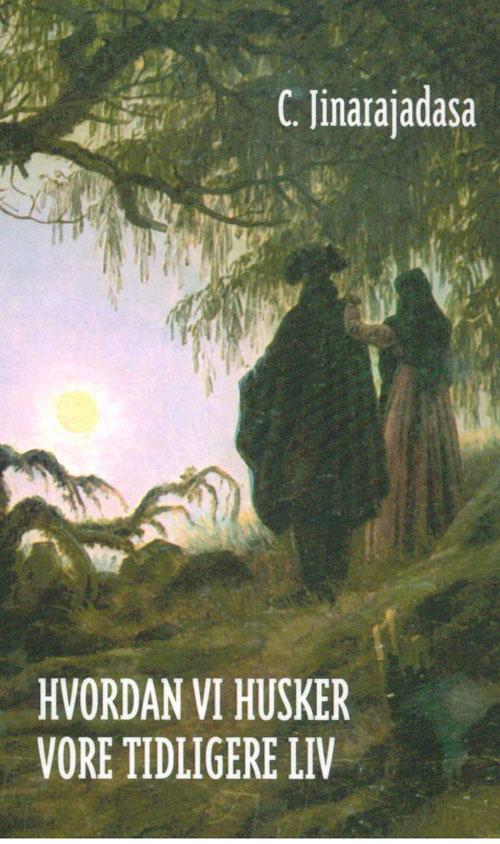 Hvordan vi husker vore tidligere liv fra N/A på bog & mystik