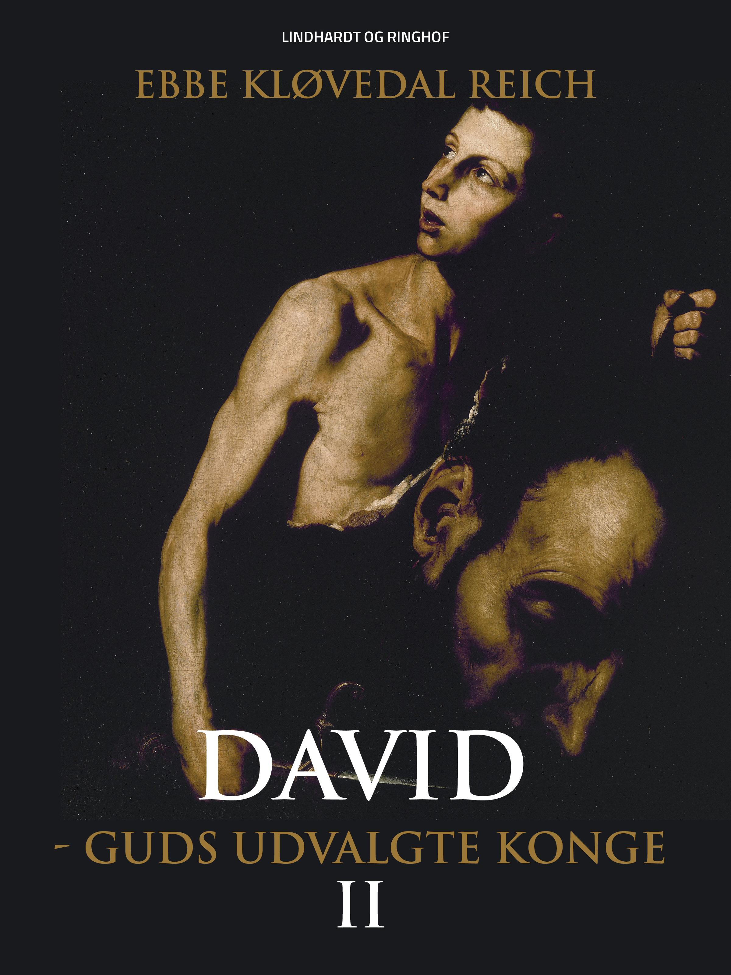 N/A David - guds udvalgte konge (david nr. 2) - e-bog på bog & mystik