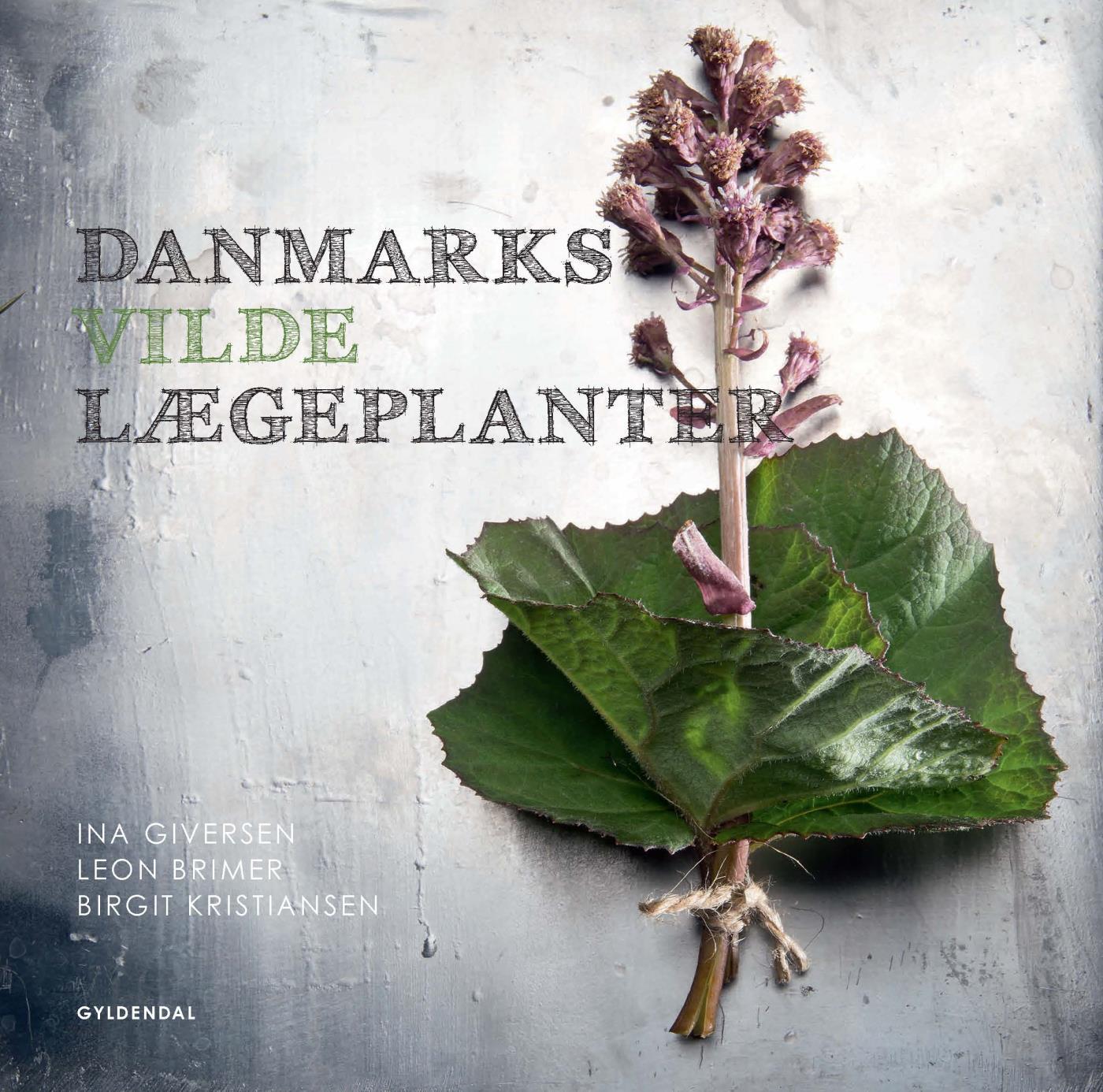 Image of   Danmarks vilde lægeplanter - E-bog