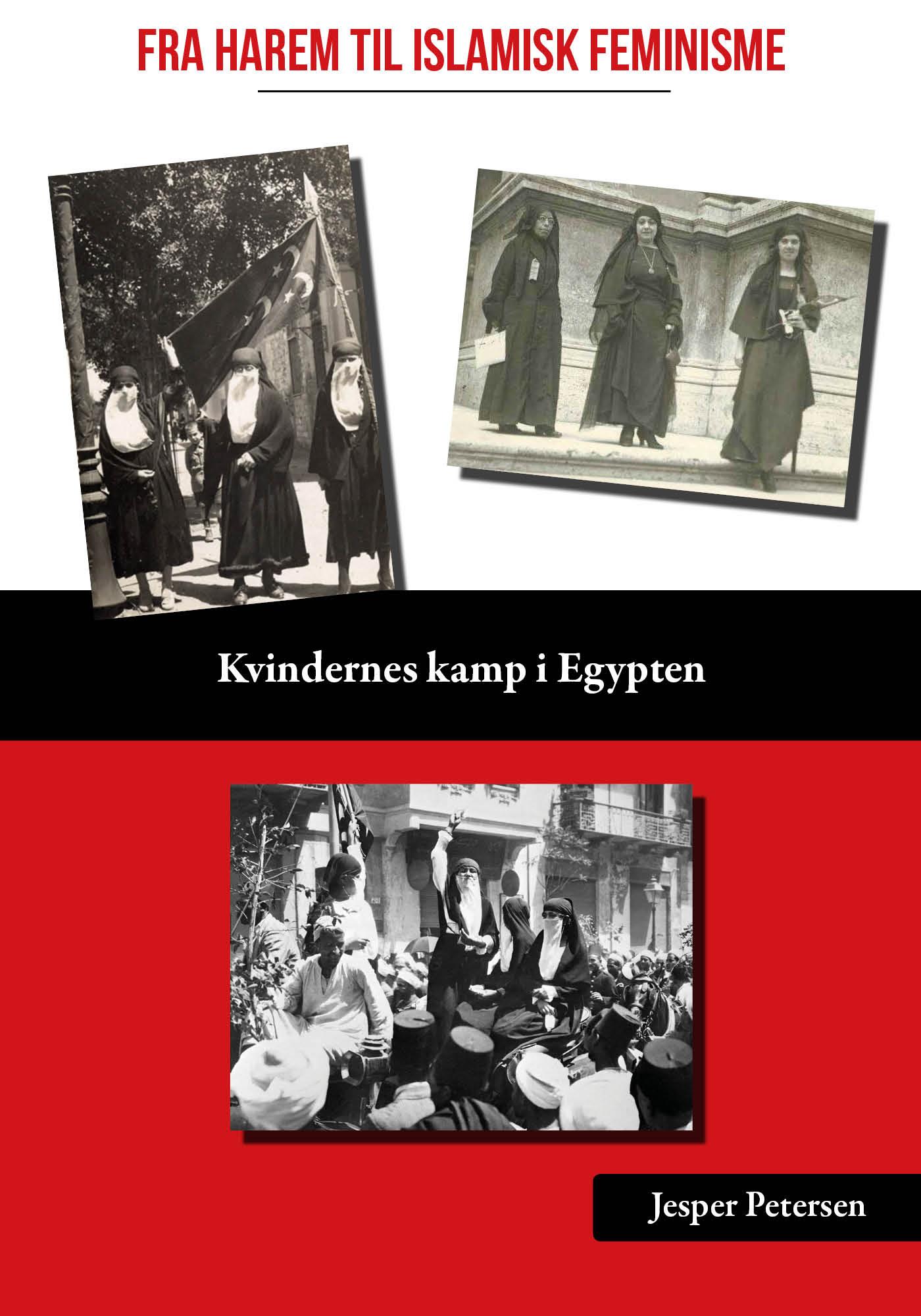 Image of   Fra harem til islamisk feminisme - E-bog