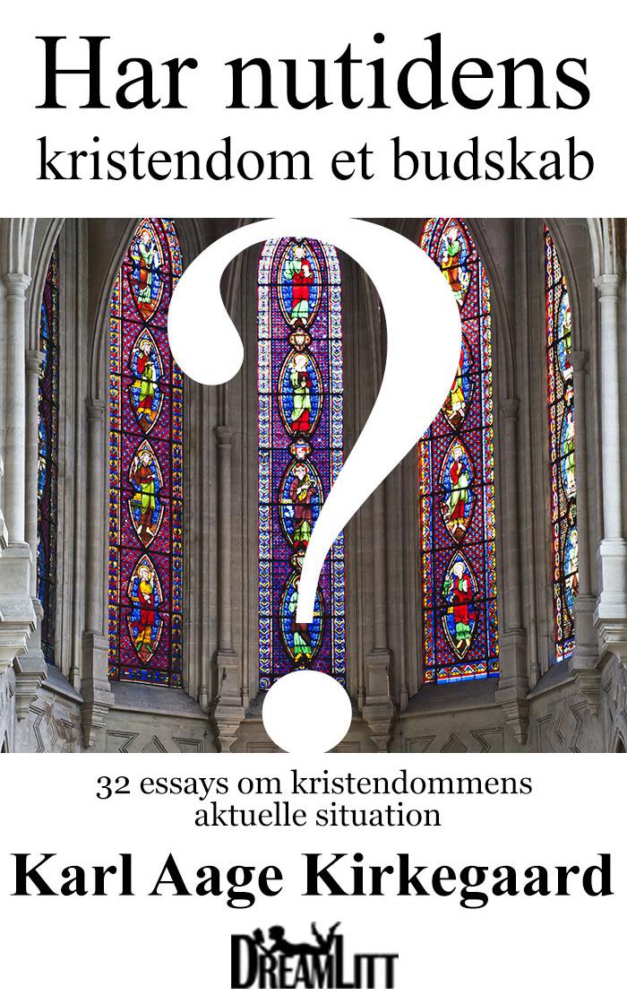 Har nutidens kristendom et budskab? - E-bog