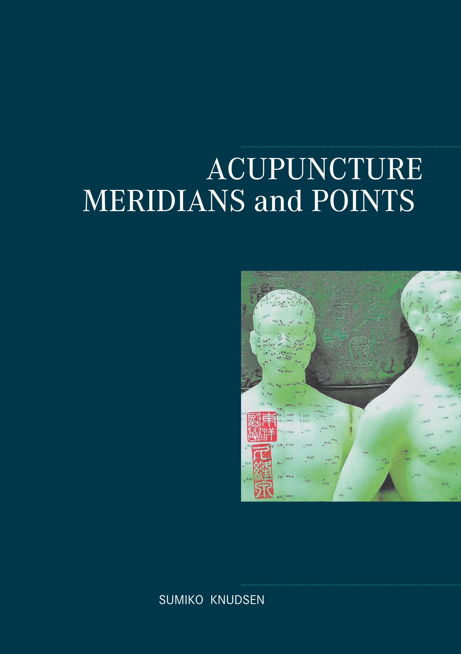 Image of   Acupuncture Meridians and Points - E-bog