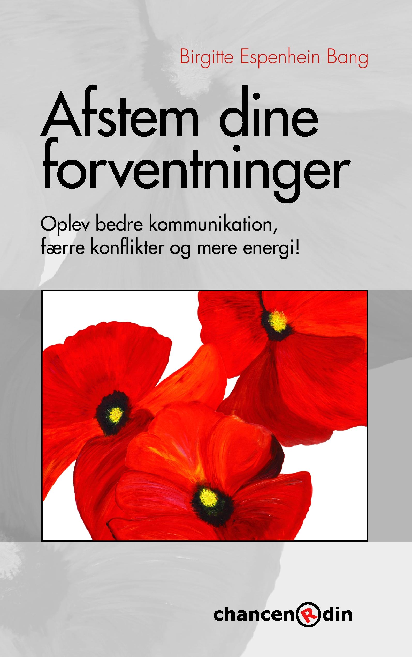 Image of   Afstem dine forventninger - E-bog