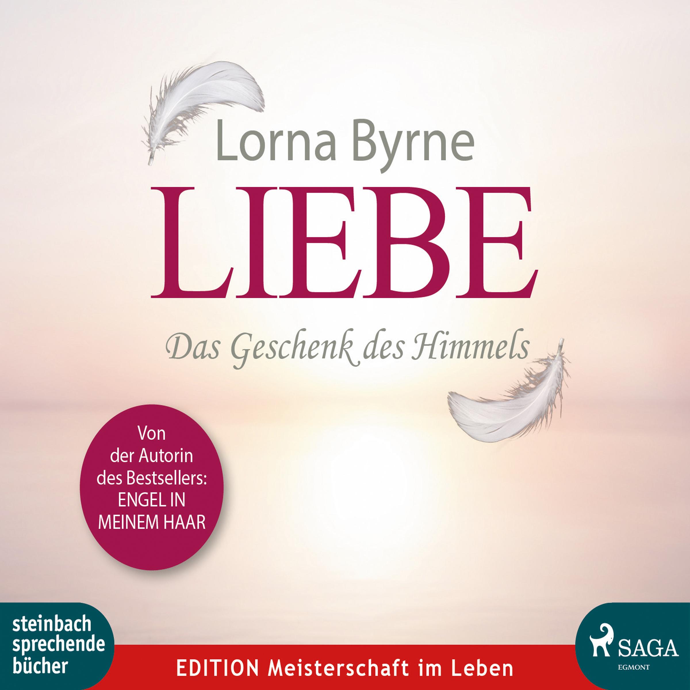 N/A Liebe - das geschenk des himmels - e-lydbog fra bog & mystik