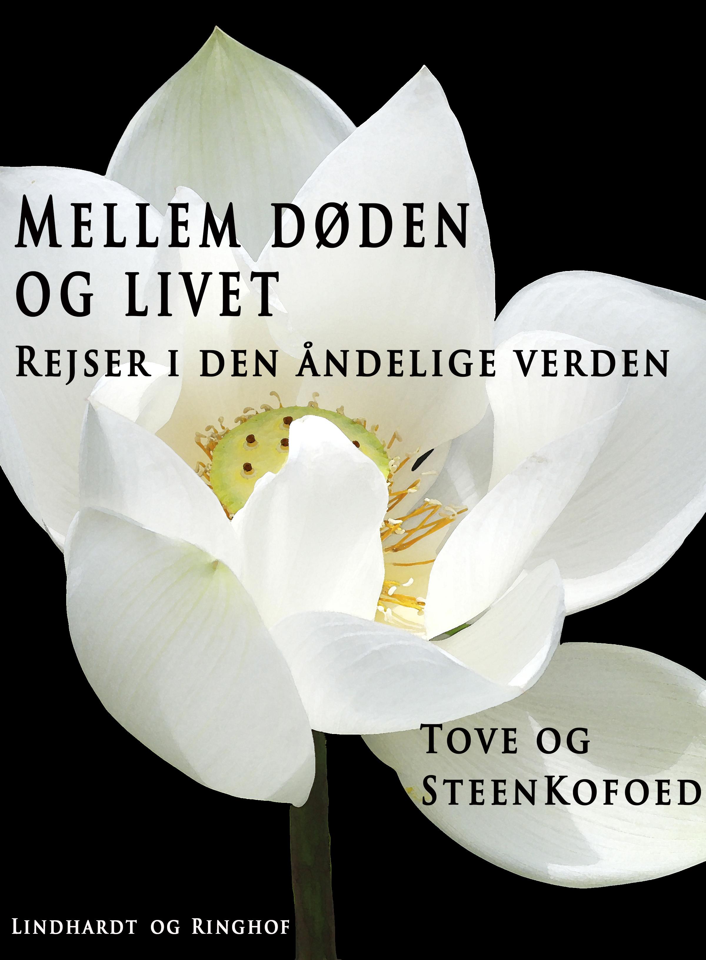 Image of   Mellem døden og livet - E-bog