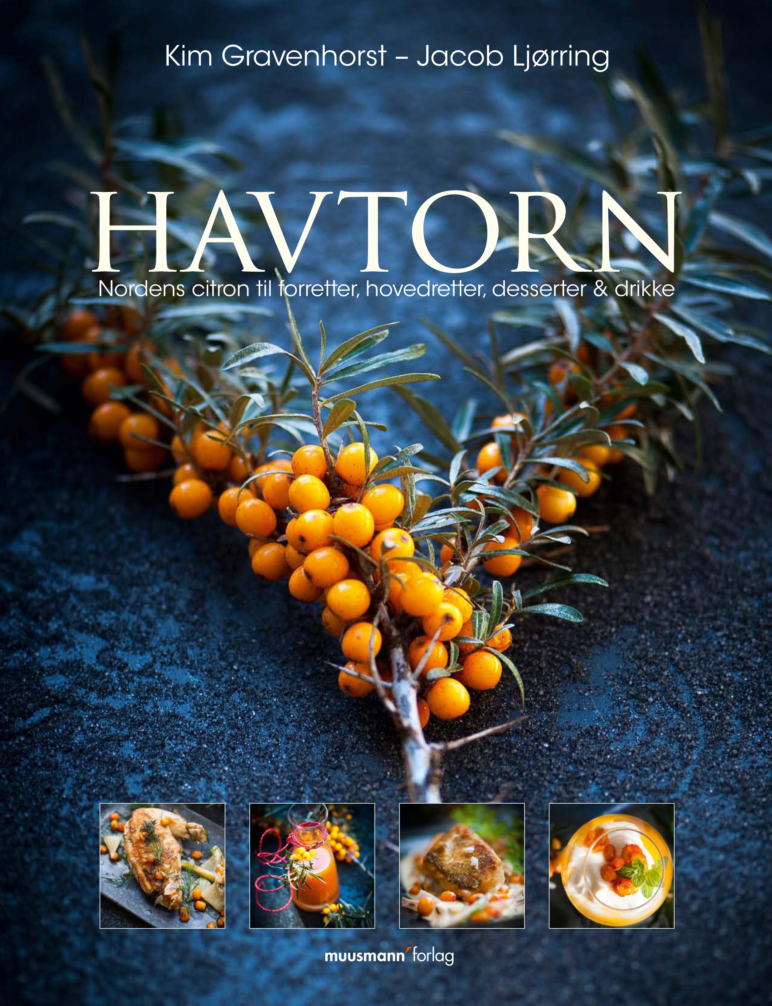 N/A Havtorn - e-bog fra bog & mystik