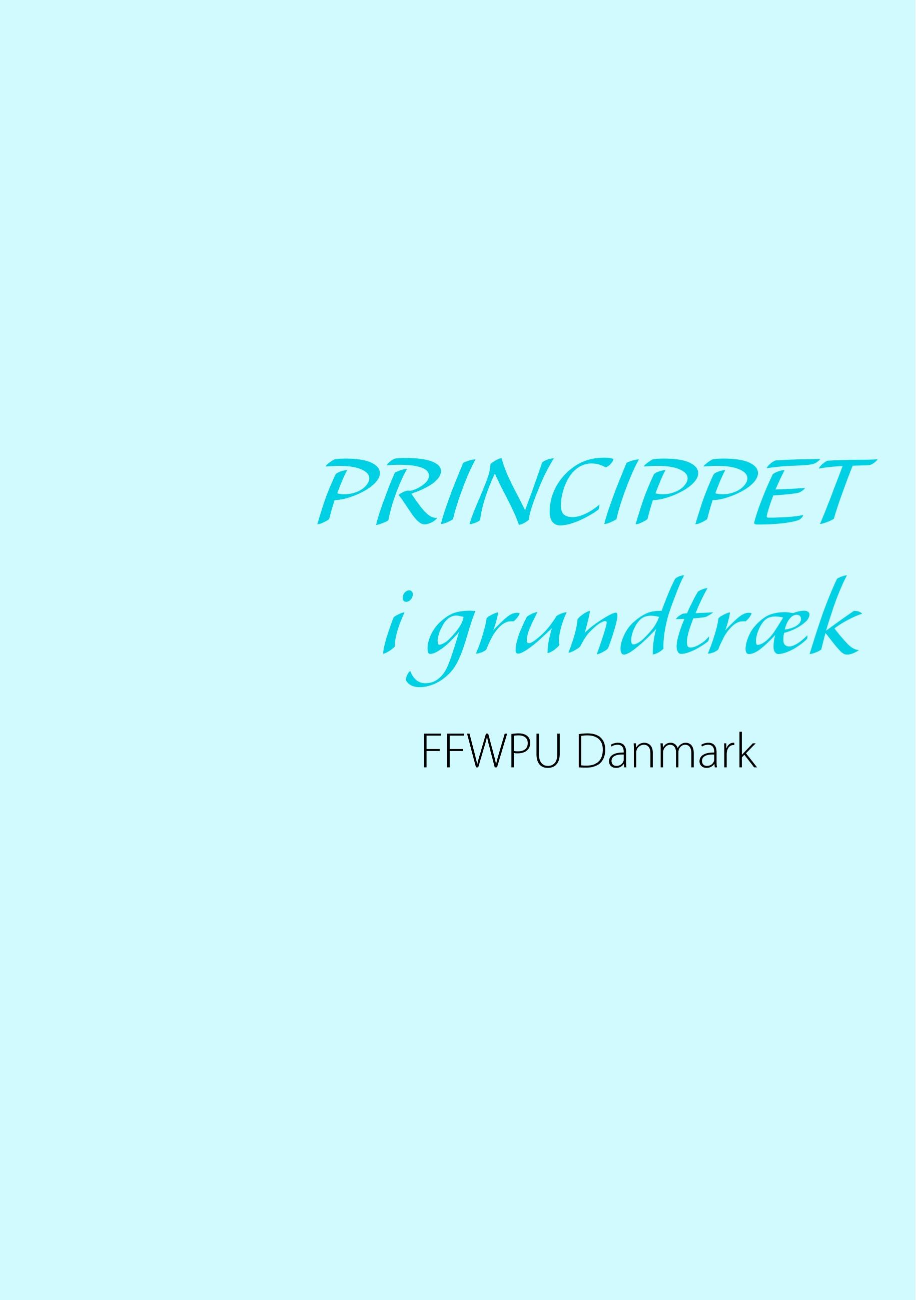 Image of   Princippet i grundtræk - E-bog