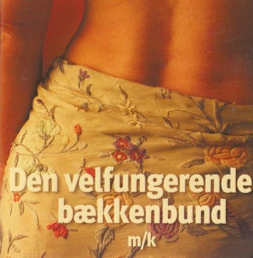 N/A – Den velfungerende bækkenbund - e-lydbog på bog & mystik