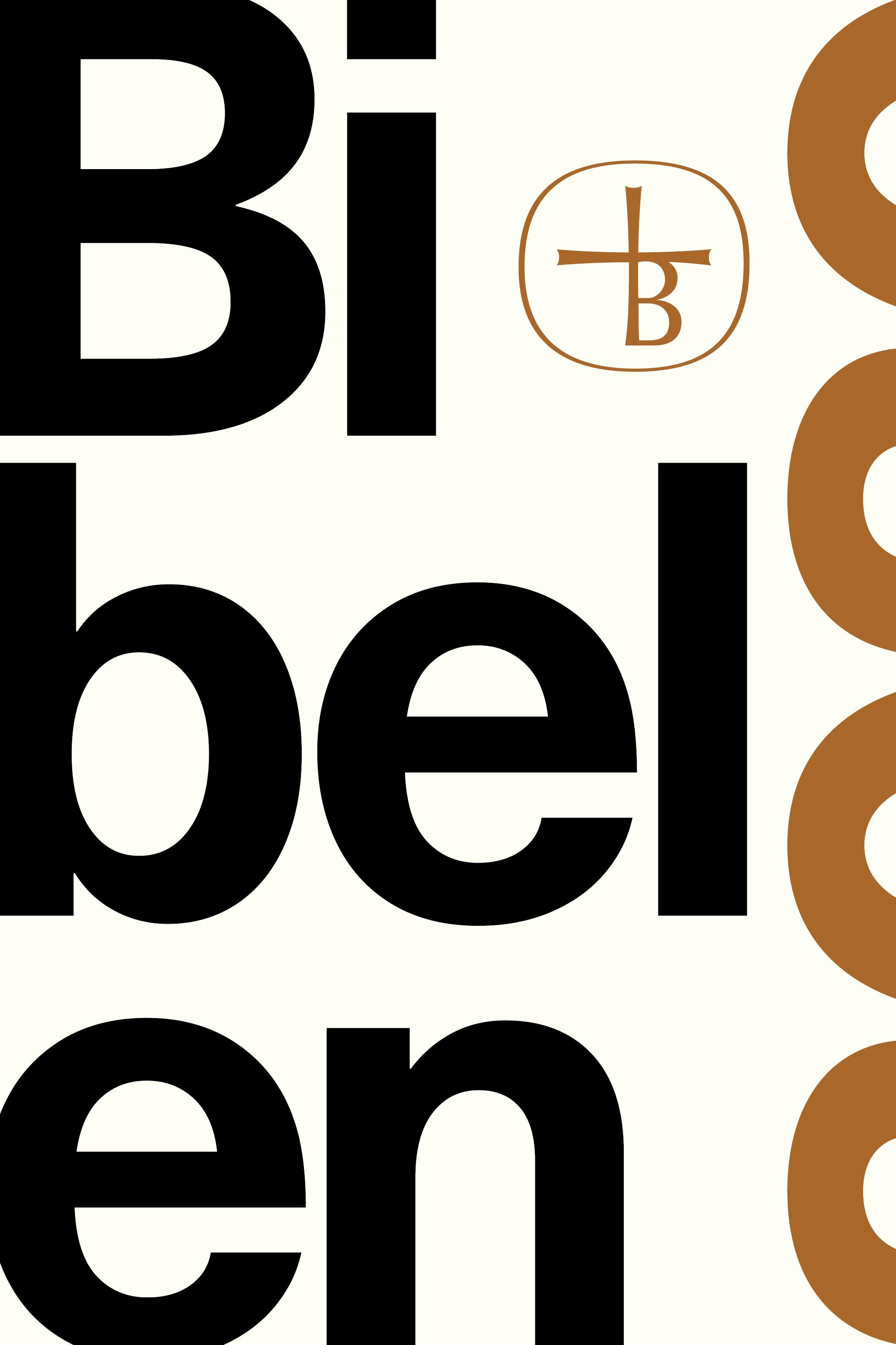Image of   Bibelen 2020 - E-lydbog