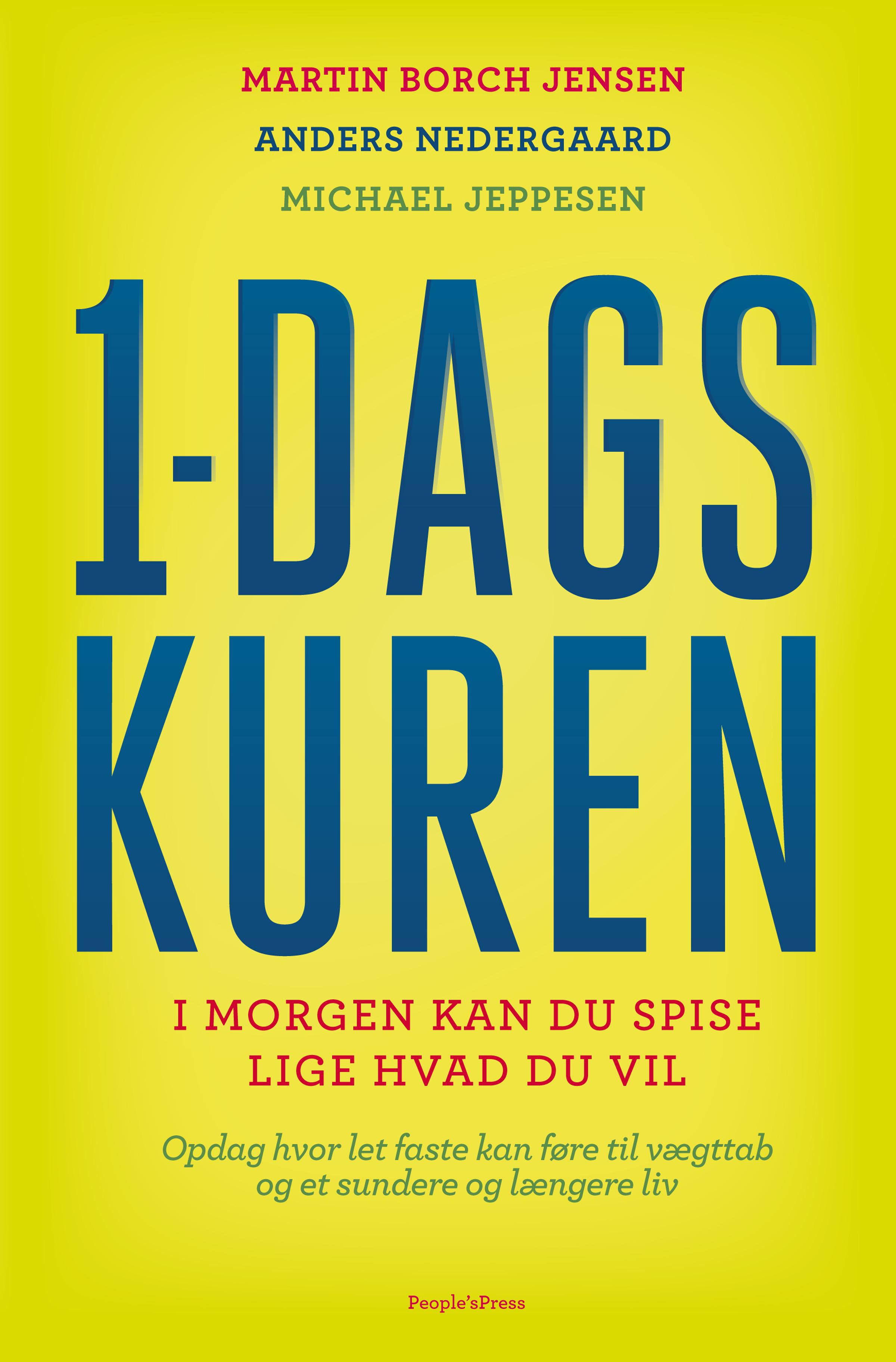 Image of   1-dagskuren - E-bog