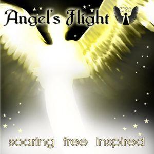 Angels flight fra N/A fra bog & mystik
