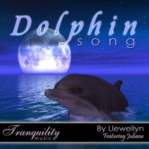 N/A Dolphin song på bog & mystik