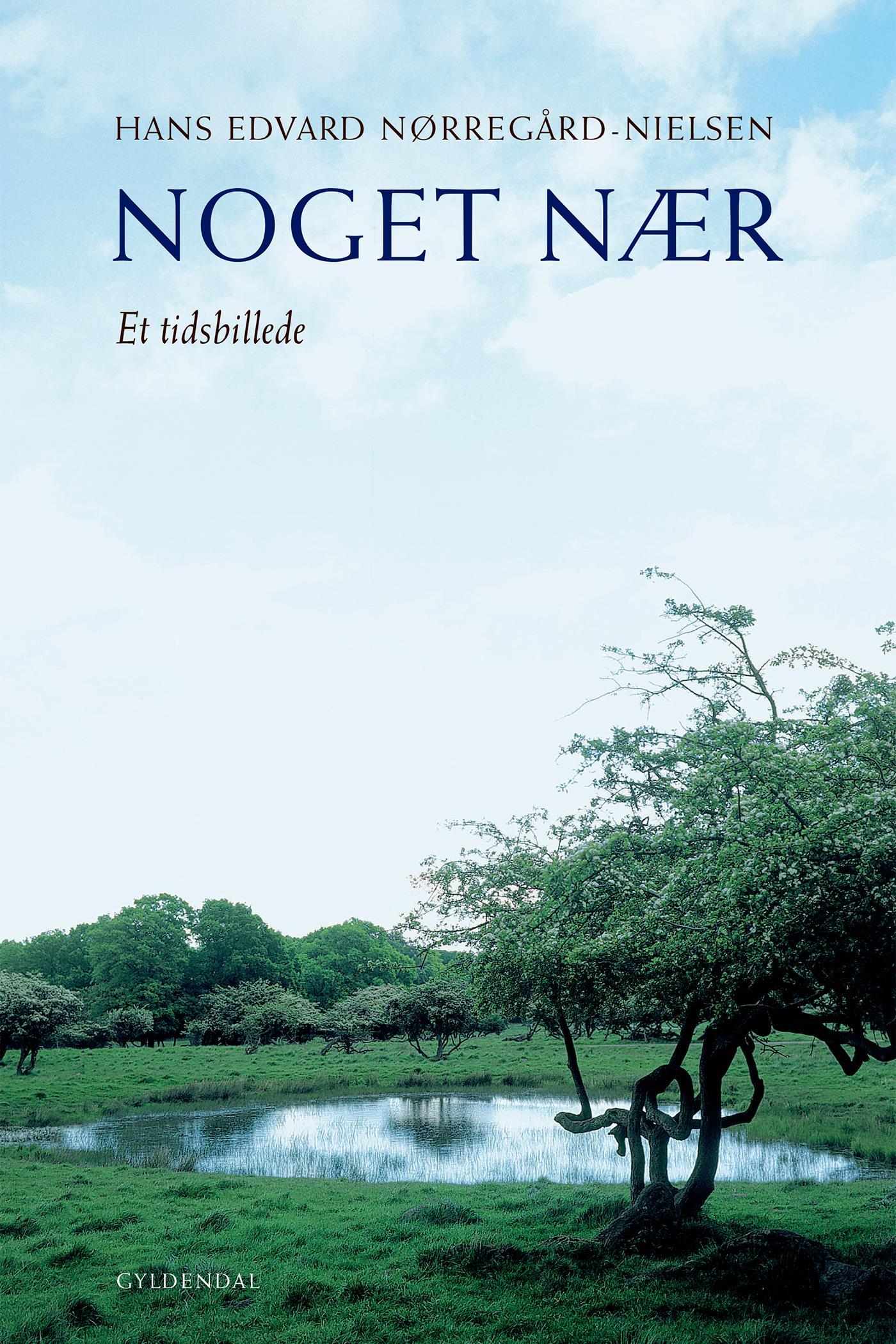 Noget nær - e-bog fra N/A fra bog & mystik