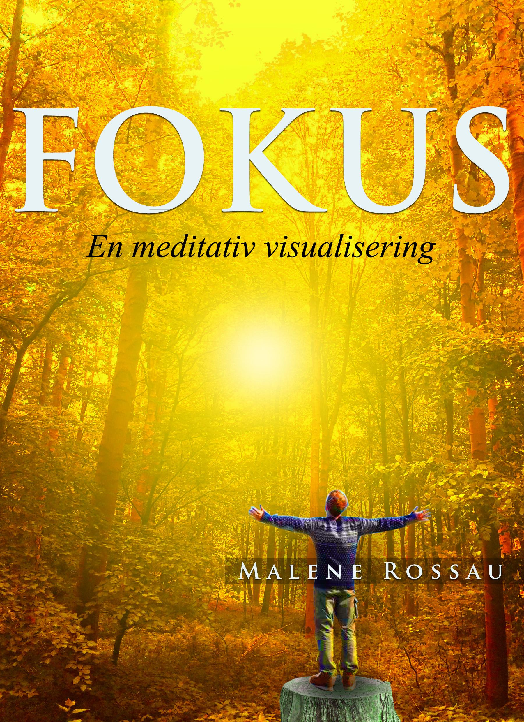 Fokus - en meditativ visualisering - e-bog fra N/A fra bog & mystik