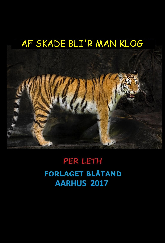 Image of   Af Skade Blir Man Klog - E-bog