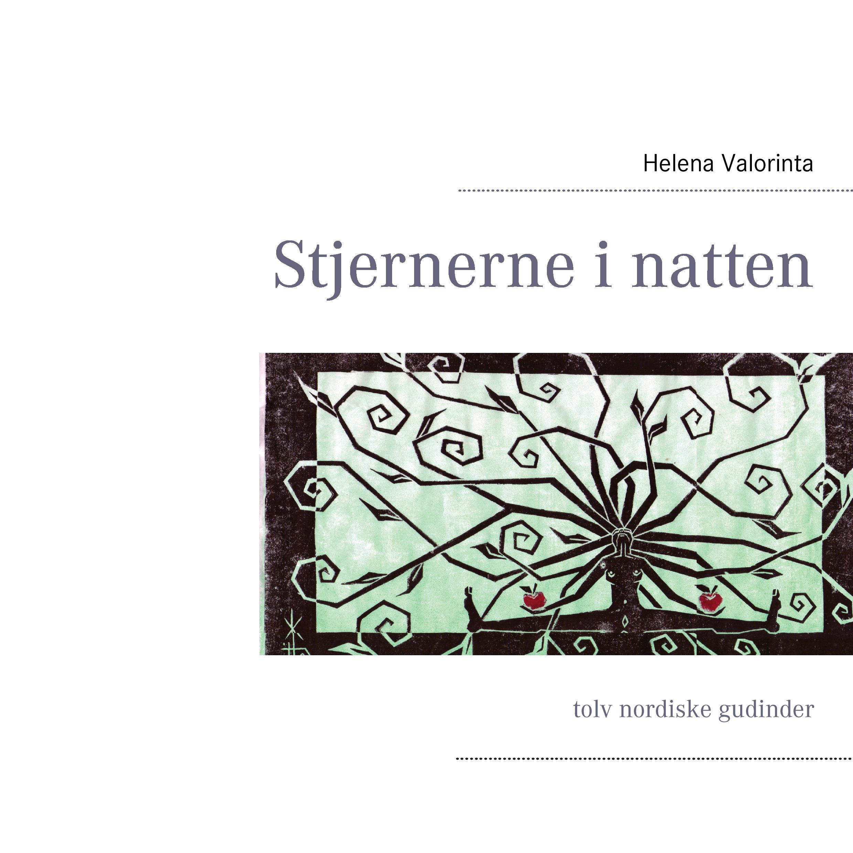 N/A Stjernerne i natten - e-bog fra bog & mystik