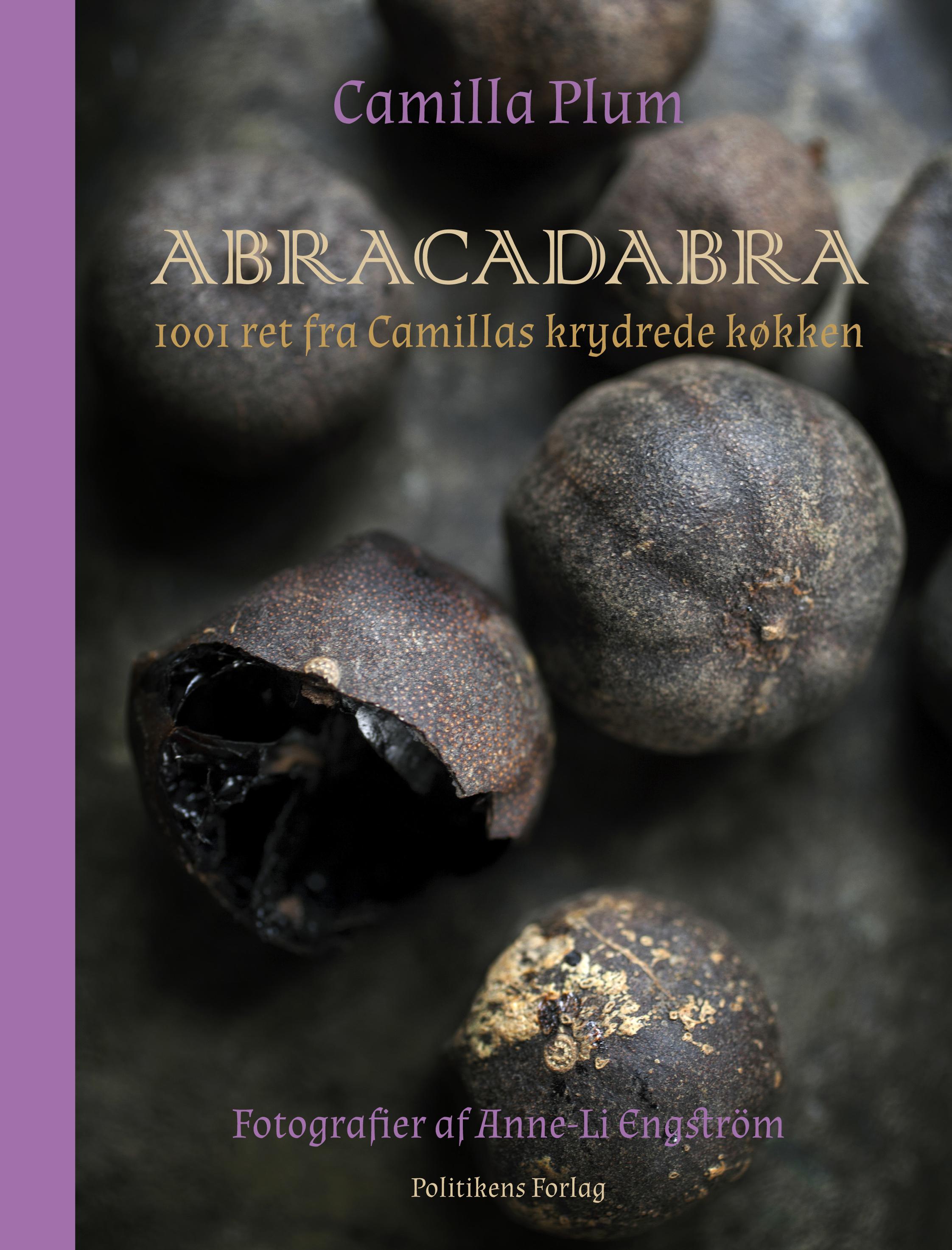 Image of   Abracadabra - E-bog