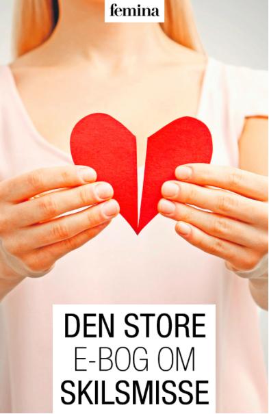 N/A – Den store e-bog om skilsmisse - e-bog på bog & mystik