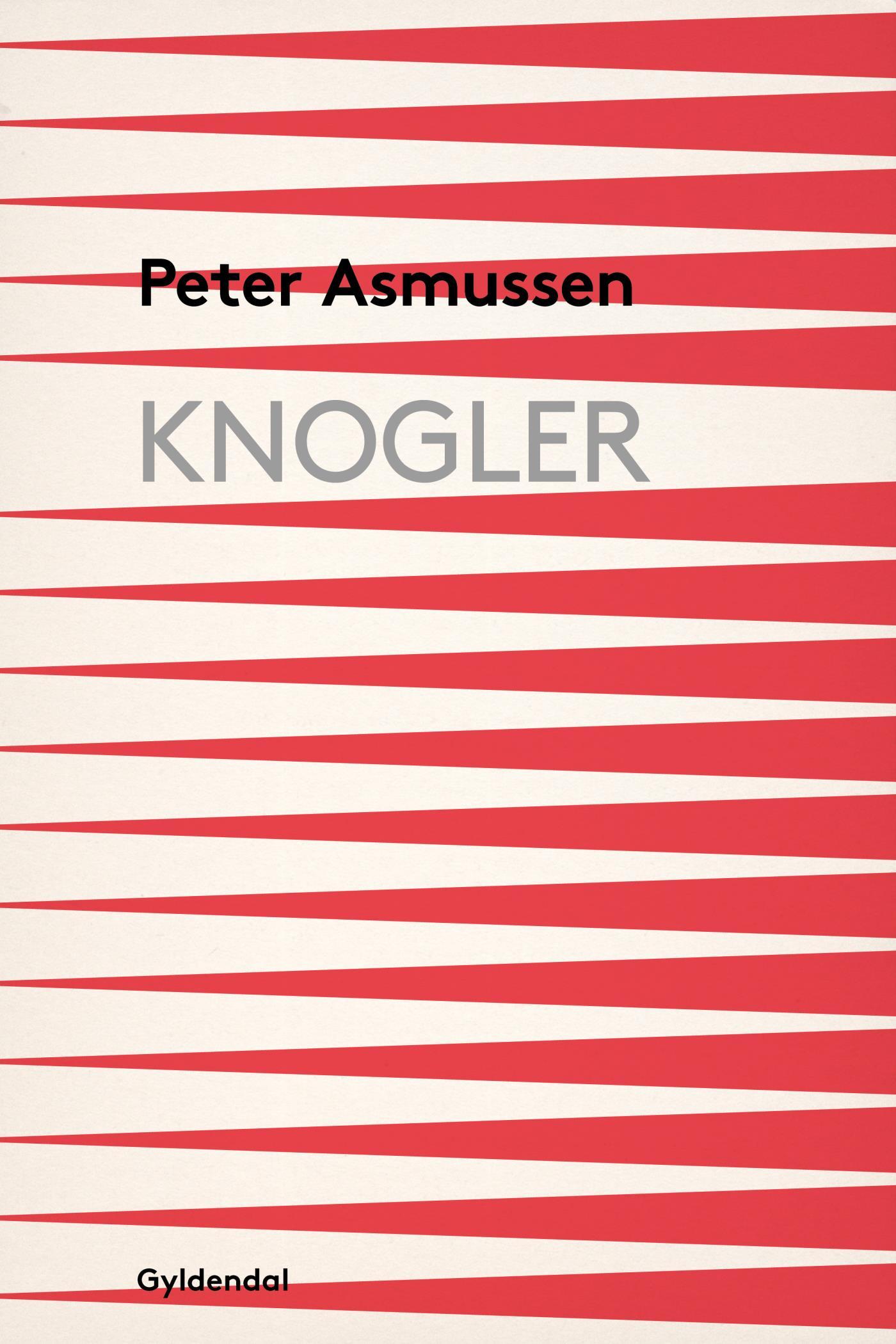 Knogler - e-bog fra N/A på bog & mystik