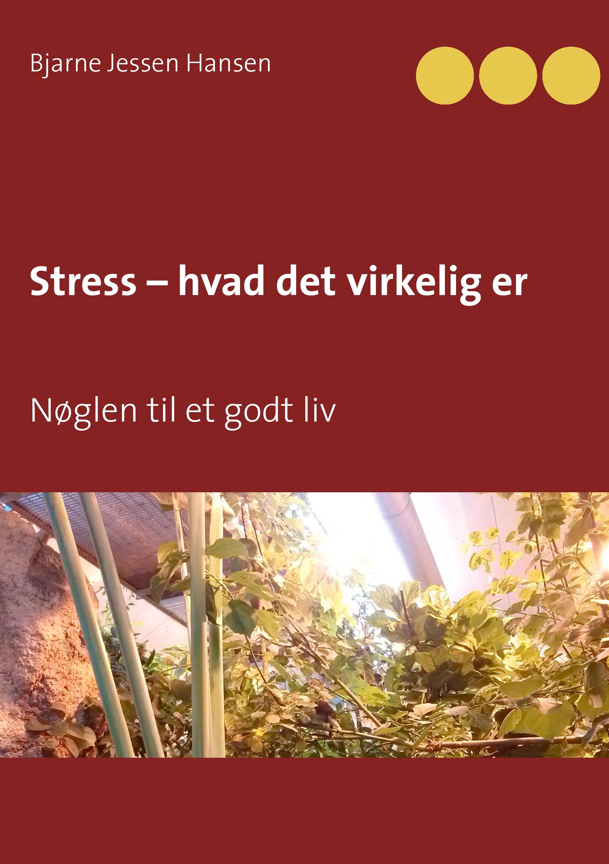 Image of   Stress - hvad det virkelig er - E-bog