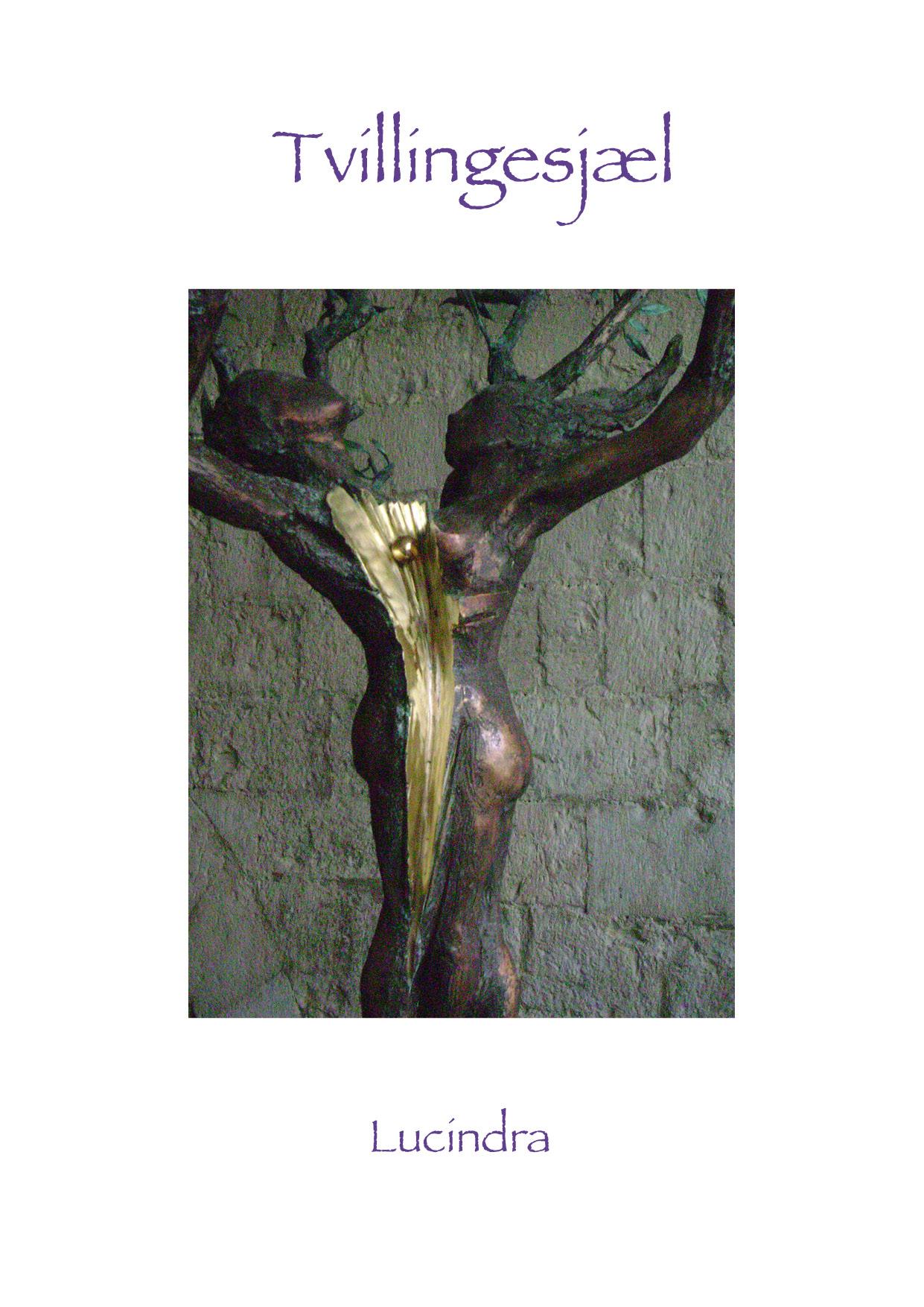 Tvillingesjæl - E-bog