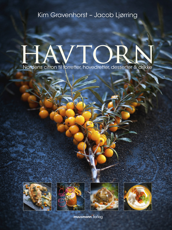 N/A – Havtorn - e-bog på bog & mystik