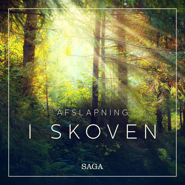 Image of   Afslapning - I skoven - E-lydbog