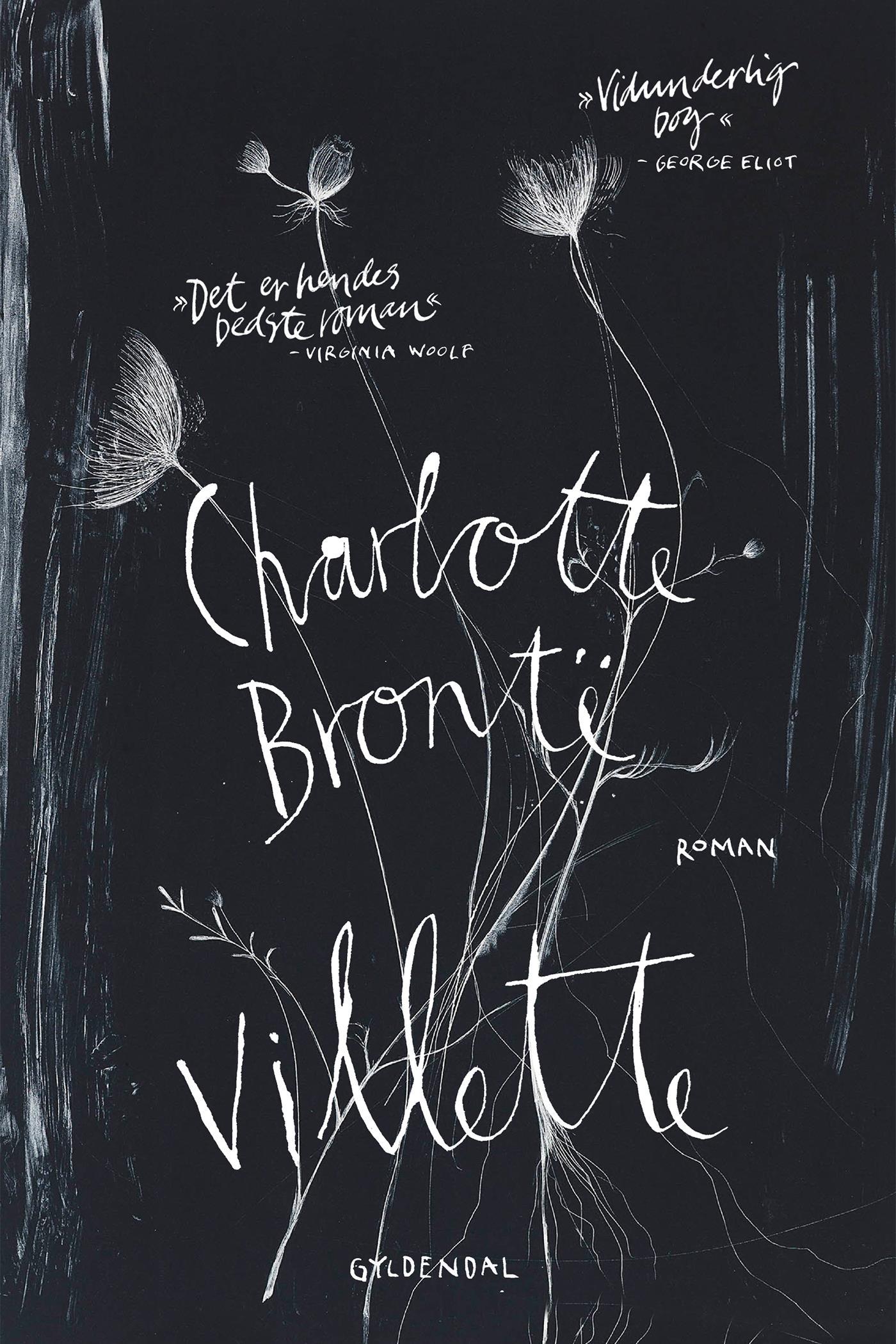 Villette - E-bog