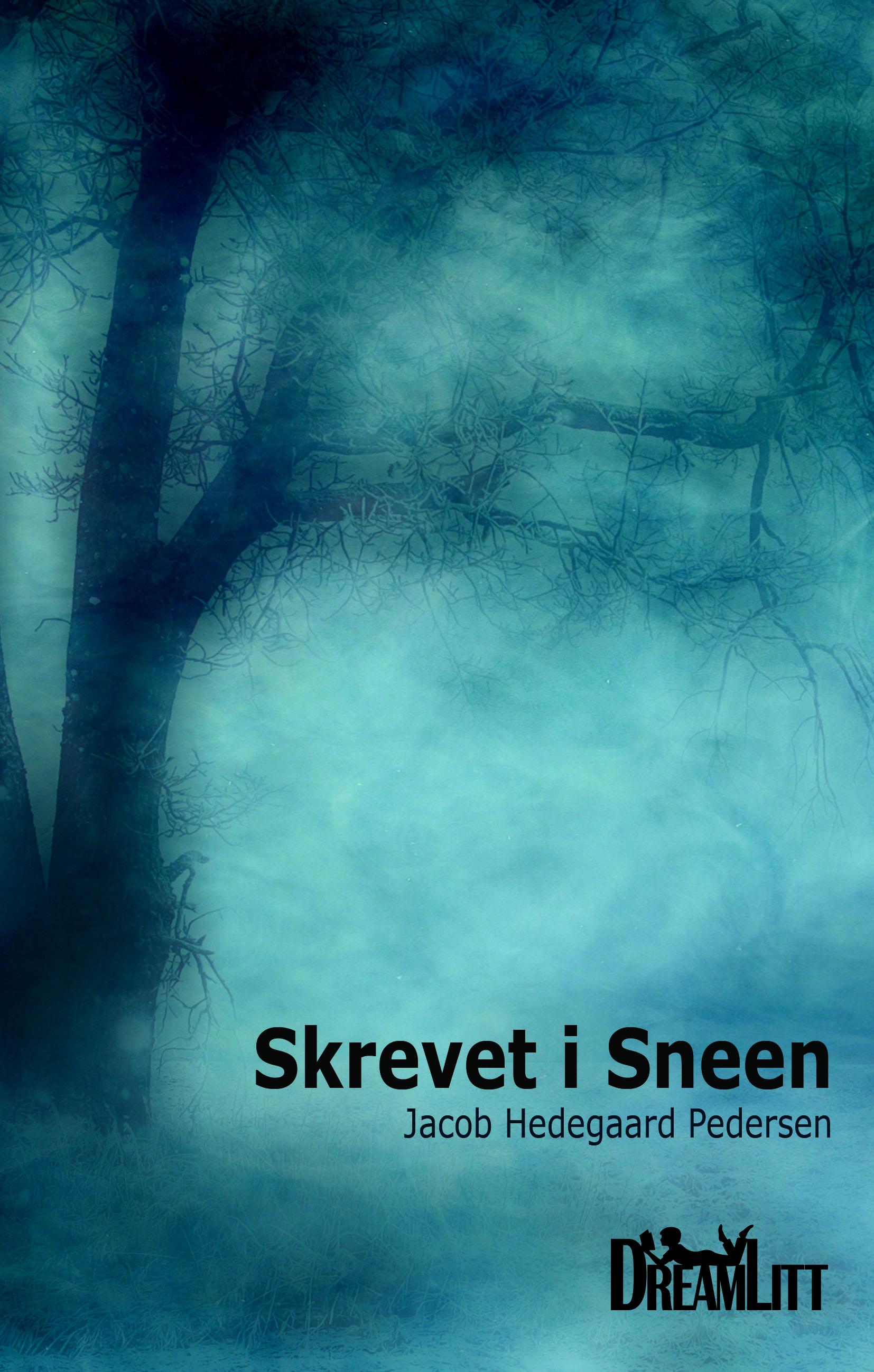 N/A Skrevet i sneen - e-bog på bog & mystik