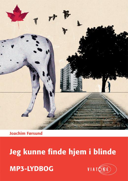 N/A – Jeg kunne finde hjem i blinde - e-lydbog fra bog & mystik
