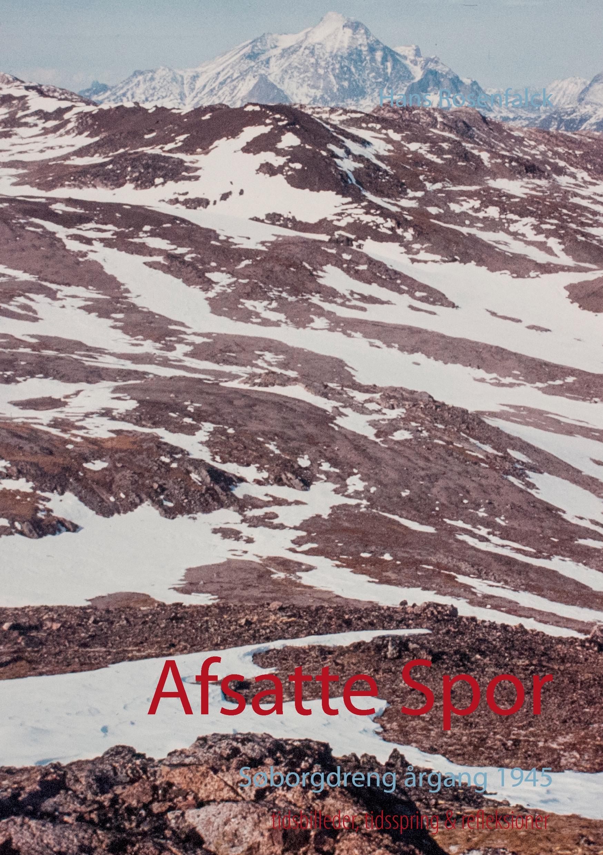 Image of   Afsatte Spor - E-bog