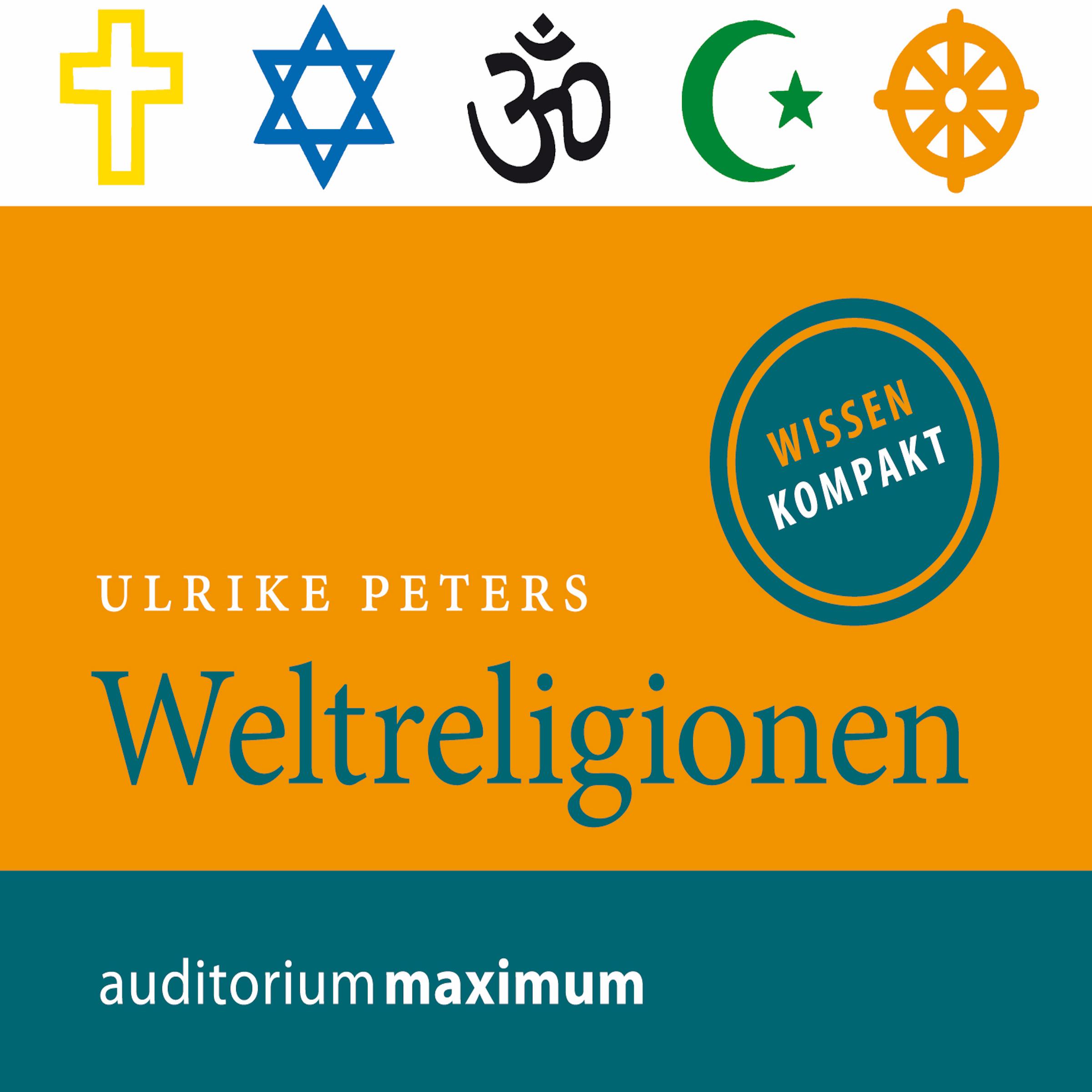 Weltreligionen - E-lydbog