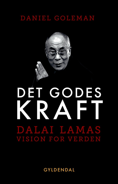 Image of   Det godes kraft - Dalai Lamas vision for verden