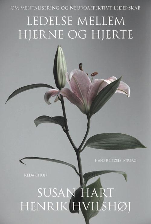 Ledelse mellem hjerne og hjerte fra N/A fra bog & mystik