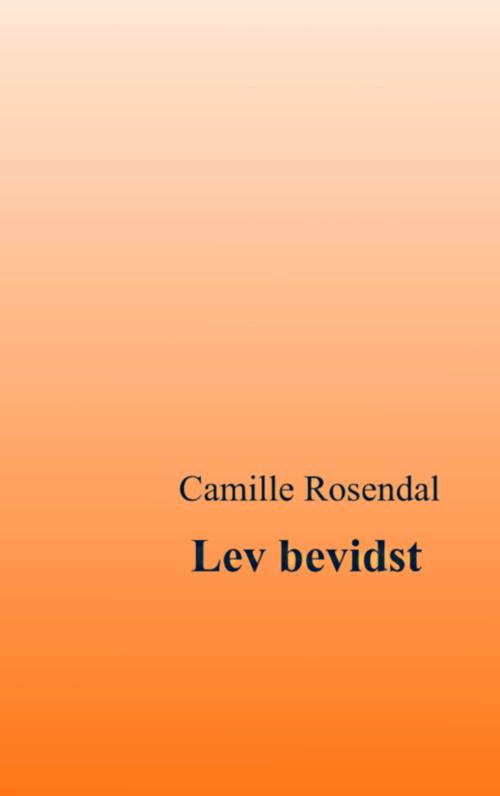 N/A Lev bevidst fra bog & mystik
