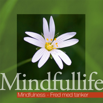 Mindfullife - Fred med tanker
