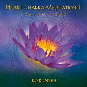N/A – Heart chakra meditation 2 fra bog & mystik