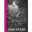 Hvad er ego? - E-bog