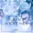 Ambience - Rainy Weather - E-lydbog