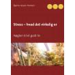 Stress - hvad det virkelig er - E-bog