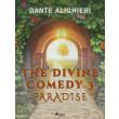 The Divine Comedy 3: Paradise - E-bog
