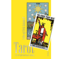 Tarot bog + Rider Waite Tarot - Standard - Tarotkort