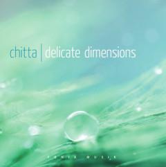 Delicate Dimensions - Fønix Musik