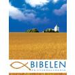 Bibelen på Hverdagsdansk - eBog Edition - E-bog