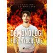 Demonologi för nybörjare - E-bog