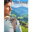 Pilgrim i Paz - E-bog