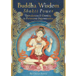 Buddha Wisdom - Shakti Power