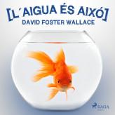 L´aigua és aixó - E-lydbog David Foster Wallace